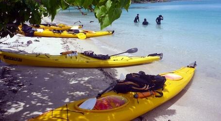 airlie beach kayaking bucks activity