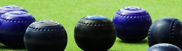 lawn bowls on the lawn