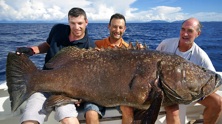 group of bucks holding a big grouper fish