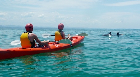 group of bucks kayaking