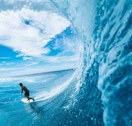 buck surfing large wave