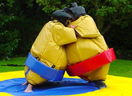 two bucks having a sumo suit fight
