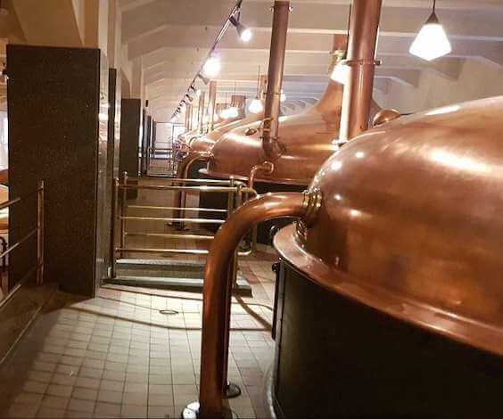 melbourne bucks craft brewery tour