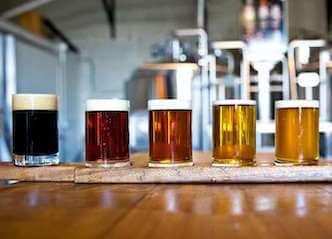 beer paddle sydney brewery