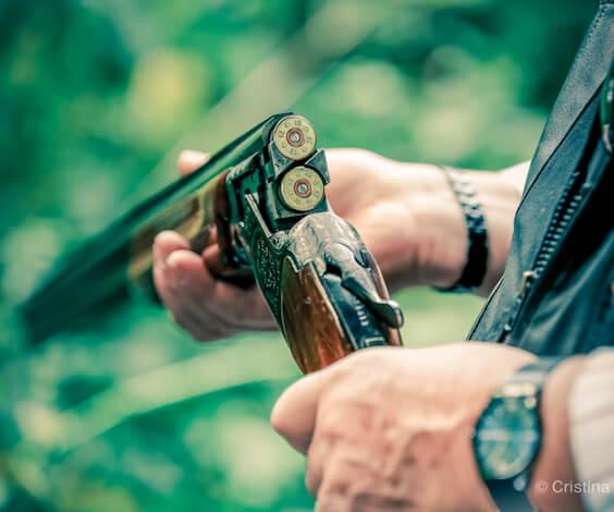 clay pigeon shotgun