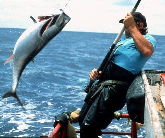 buck catching fish on deep sea fishing trip hobart