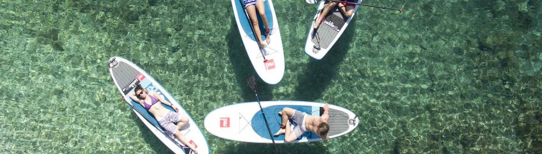 group of bucks stand up paddle boarding