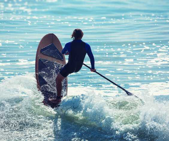 buck stand up paddle boarding at beach