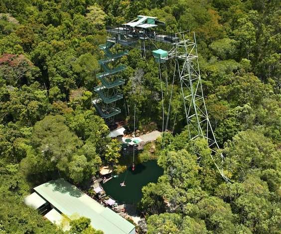cairns bungy jump bucks ideas