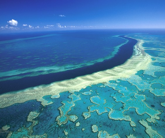 great barrier reef trip aerial view