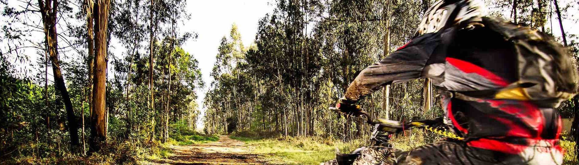 quad bike rider cairns jumping in muddy forest