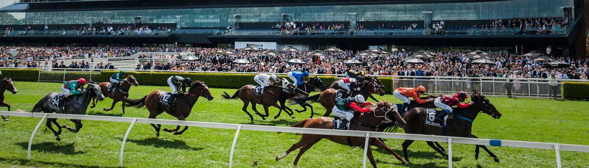 race day adelaide bucks party ideas