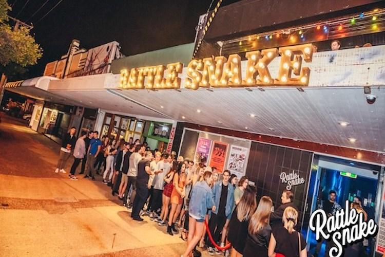 ratttle snake
