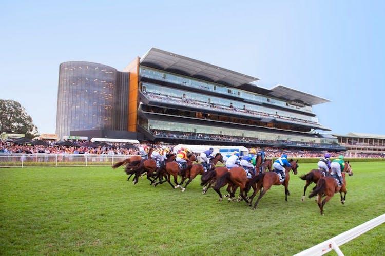 sydney race day