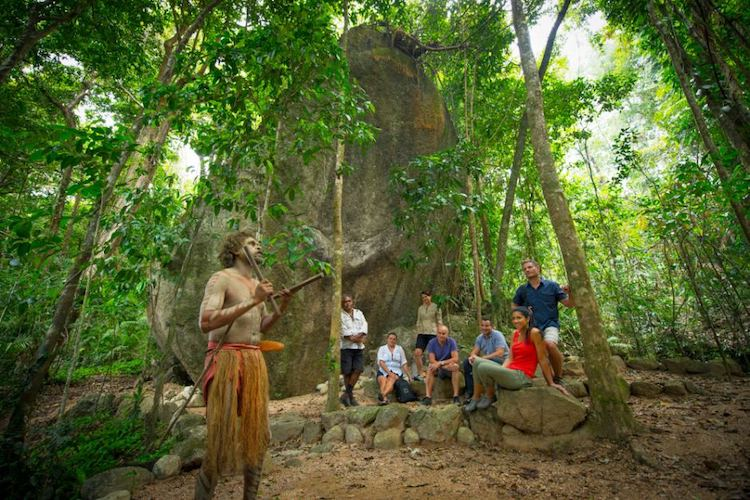The Mossman Gorge indigenous dreamtime walk