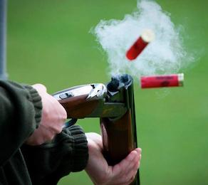 clay pigeon shooting auckland