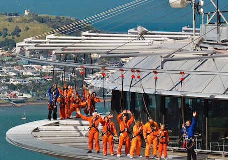 skytower skywalk auckland bucks ideas