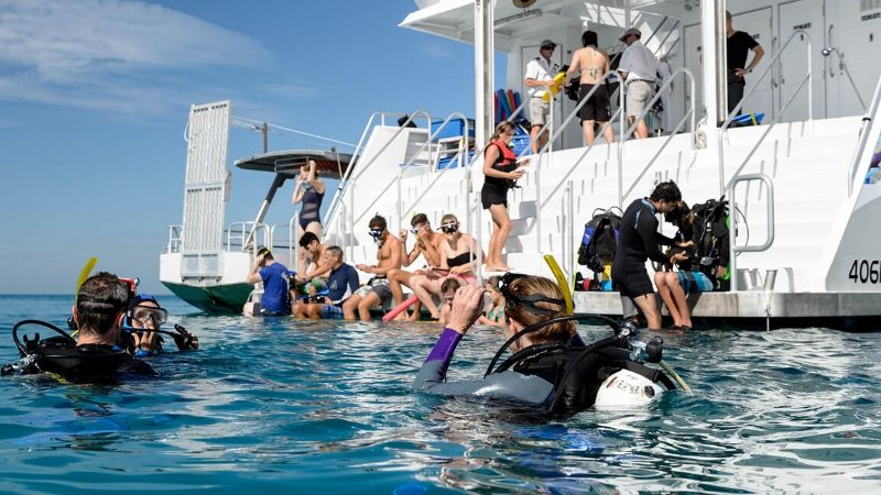 cairns great barrier reef boat tours