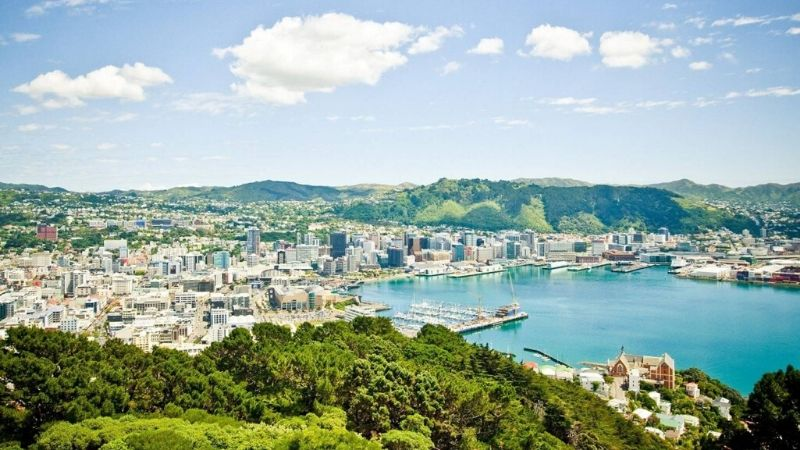 top things to do in wellington mount victoria wicked bucks