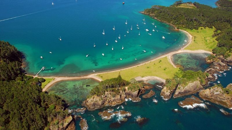 top things to do in auckland island hopping