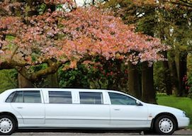 christchurch limo hire