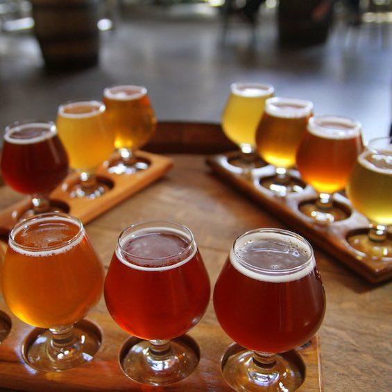 christchurch craft brewery tour bucks ideas