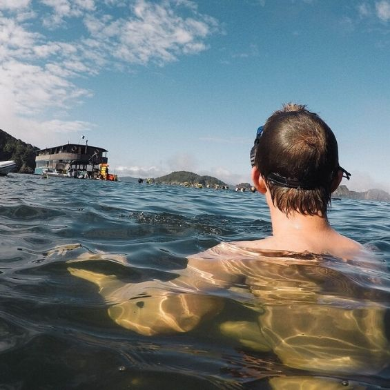 activities bucks cruise bay of islands