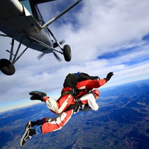 activities to do in bay of islands skydiving