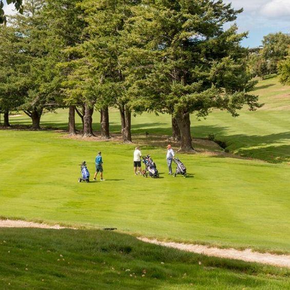 dunedin activities bucks golf day