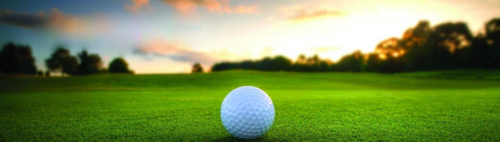 golf day dunedin bucks party