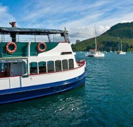 bucks cruise tauranga