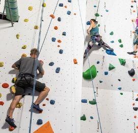 indoor rock climbing tauranga bucks
