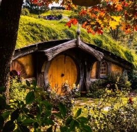 the hobbit movie set tour tauranga bucks