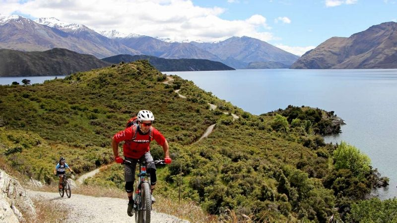 mountain bike trail in wanaka new zealand