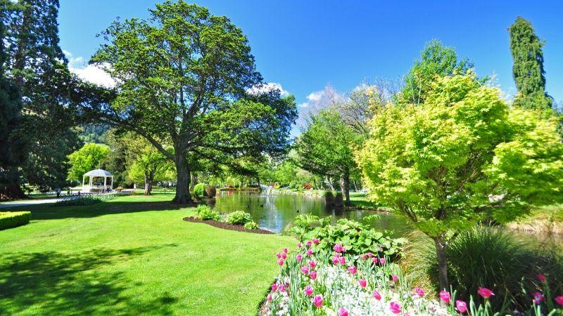 gardens in queenstown wicked bucks nz