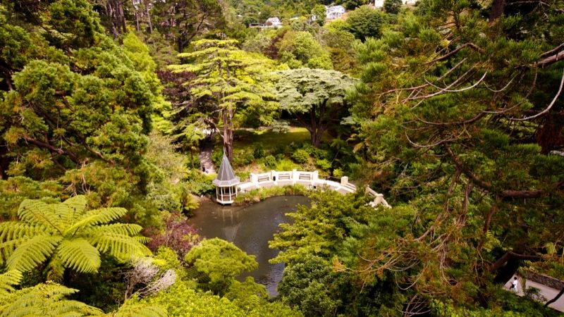 wellington botanic gardens wicked bucks attractions