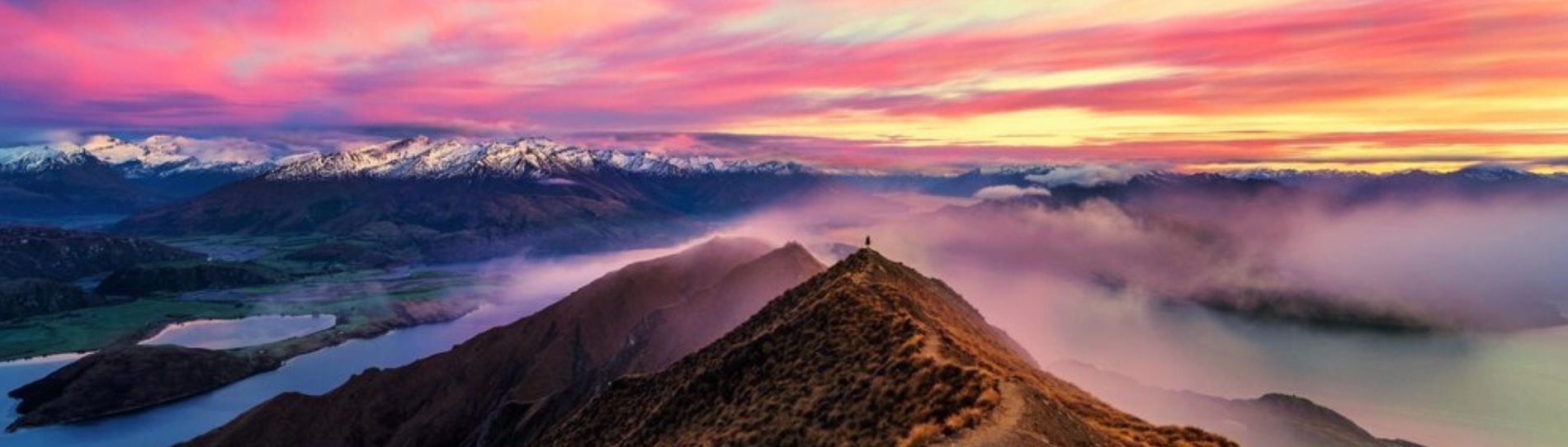 attractions and things to do in wanaka wicked bucks