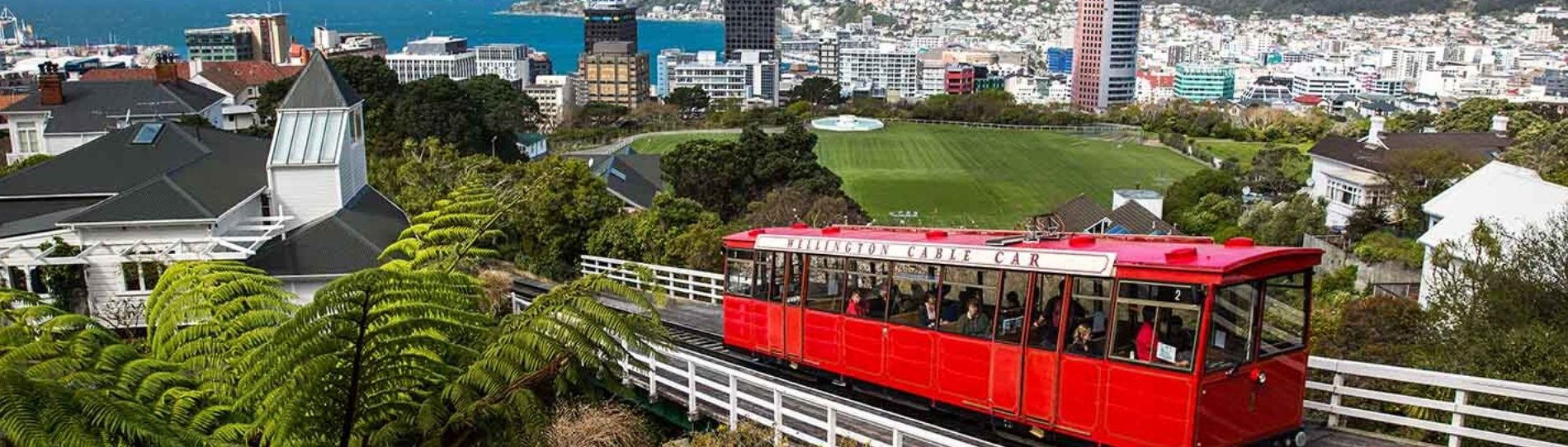 local attractions in wellington
