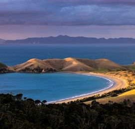 attractions to see and do in auckland new zealand