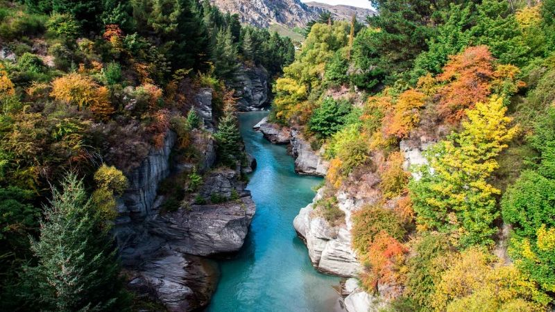 shotover river in queenstown attractions