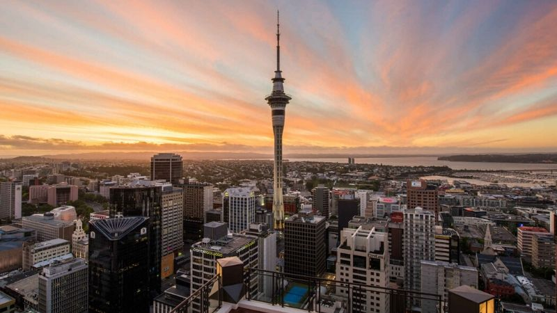 sky tower auckland attractions wicked bucks