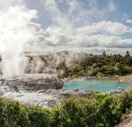 things to do in rotorua wicked