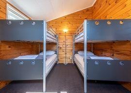 rotorua wicked bucks accommodation