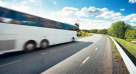 shuttle transfers NZ