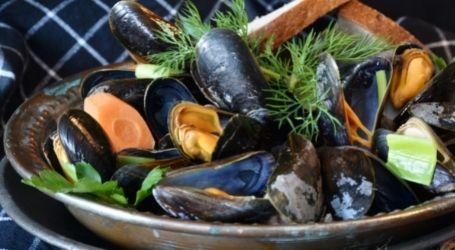 wanaka package mussels food