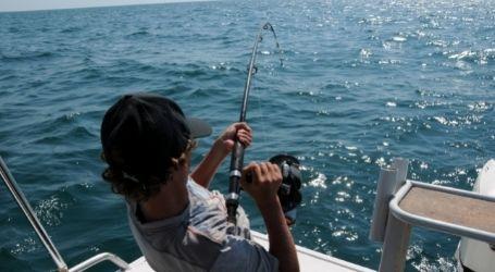 tauranga wicked bucks fishing