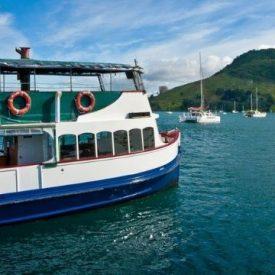 tauranga cruise package