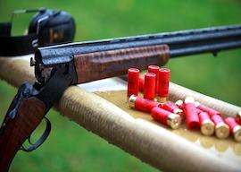 wanaka tile shooting