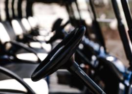 wanaka wicked bucks golf cart