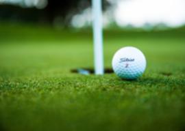 wanaka wicked bucks golf